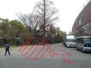 20130327_141132追記